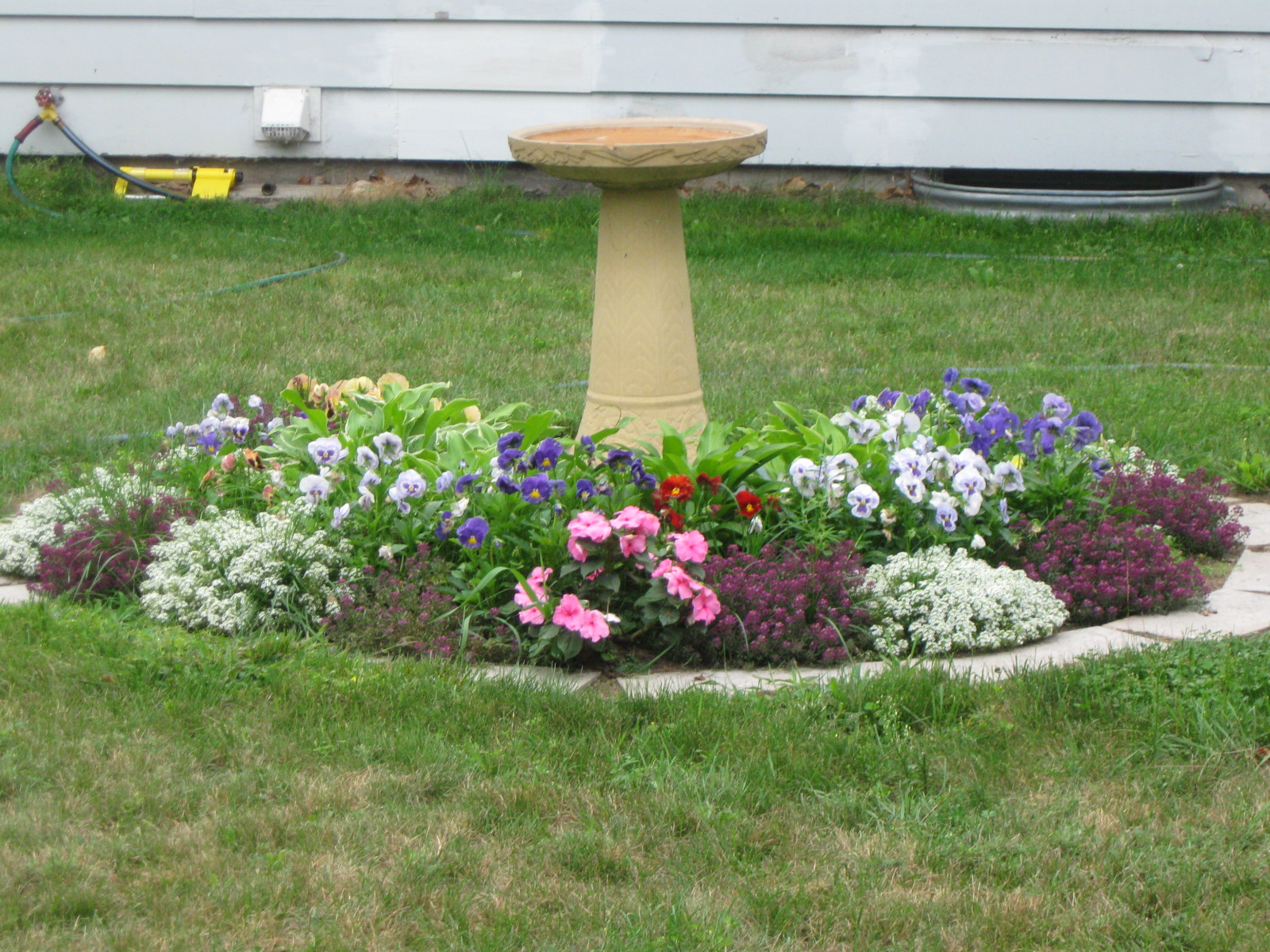 What Can I Plant Near My Septic System Beltz Liquid